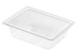 Mini Food Display Salad Box