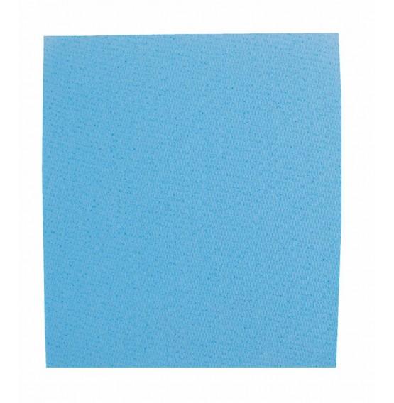 Blue Sponge Cloths