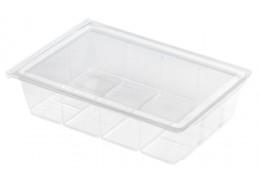 Medium Food Display Salad Box